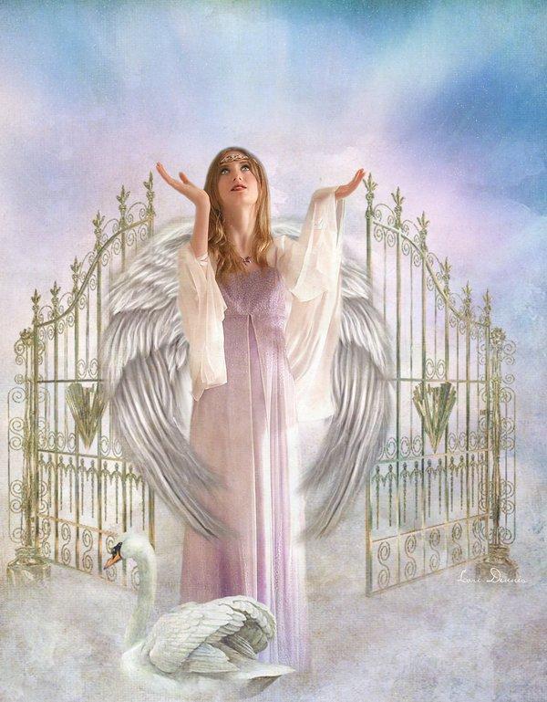 bel ange. dans anges 20d1bc98