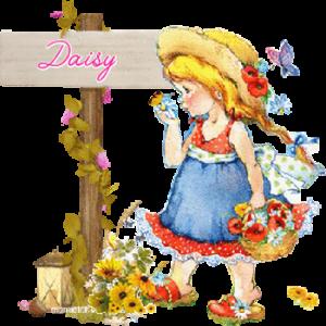 Daisy_61 - Copie